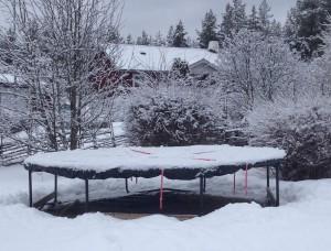 Studsmatta under vintern